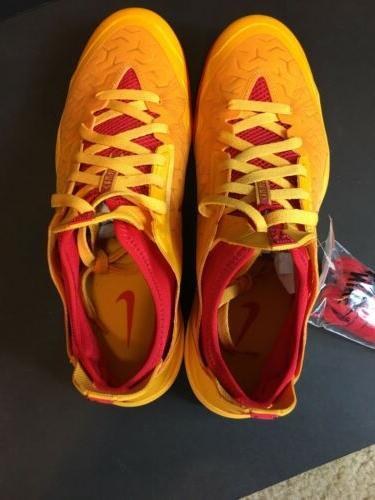 Nike PE 12 Aaron Brooks