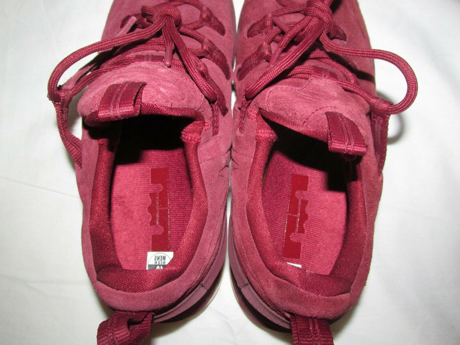 Nike Lebron PRM Basketball 10 AH8289-600
